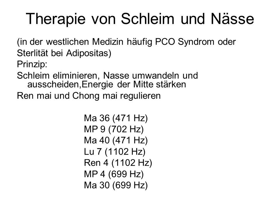 Therapie von Schleim und Nässe