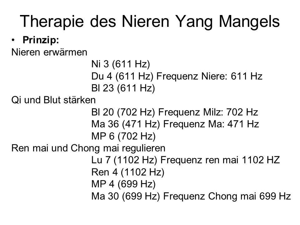 Therapie des Nieren Yang Mangels