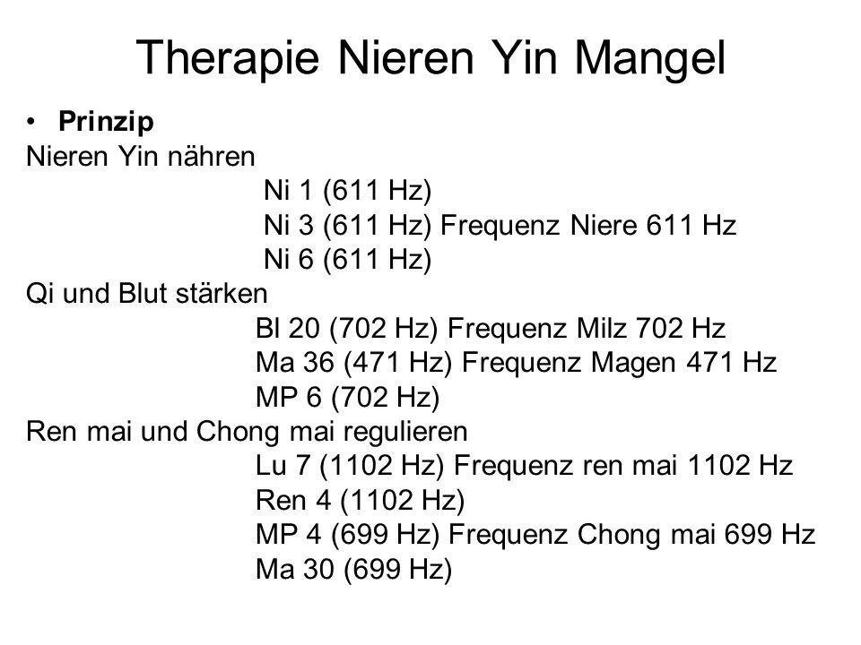 Therapie Nieren Yin Mangel