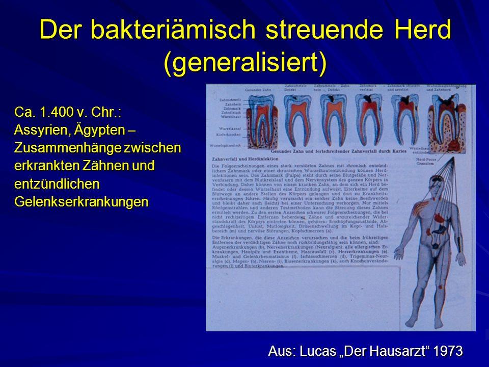 Der bakteriämisch streuende Herd (generalisiert)