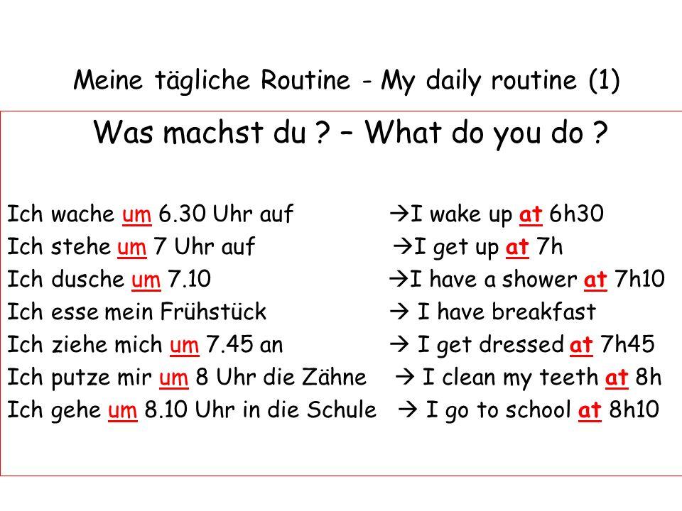 Meine tägliche Routine - My daily routine (1)