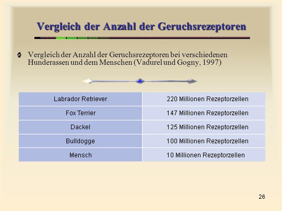 Vergleich der Anzahl der Geruchsrezeptoren
