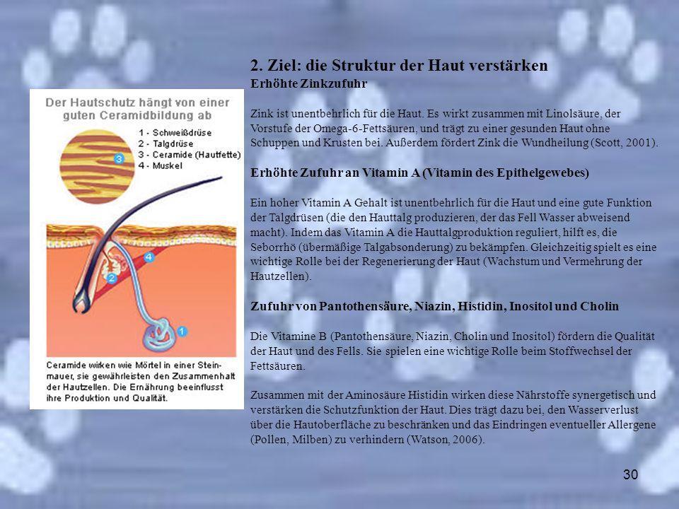 2. Ziel: die Struktur der Haut verstärken