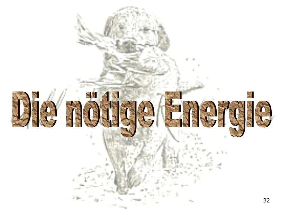 Die nötige Energie