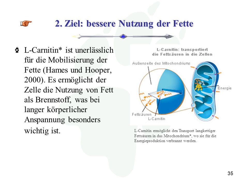 2. Ziel: bessere Nutzung der Fette