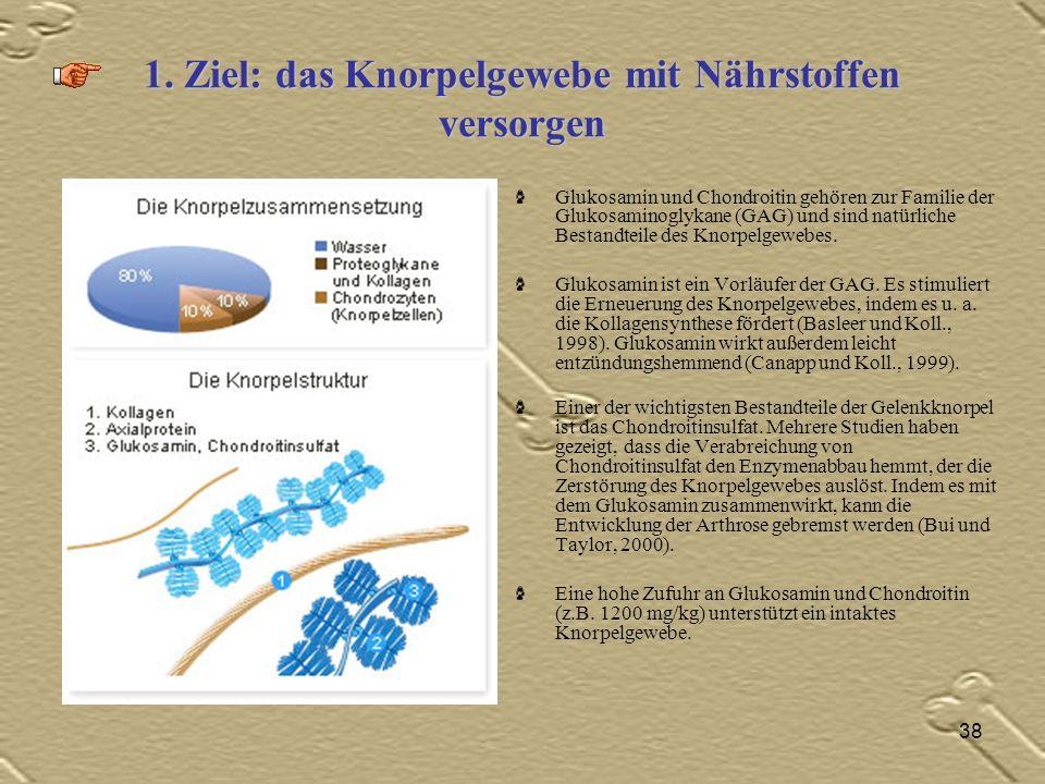 1. Ziel: das Knorpelgewebe mit Nährstoffen versorgen