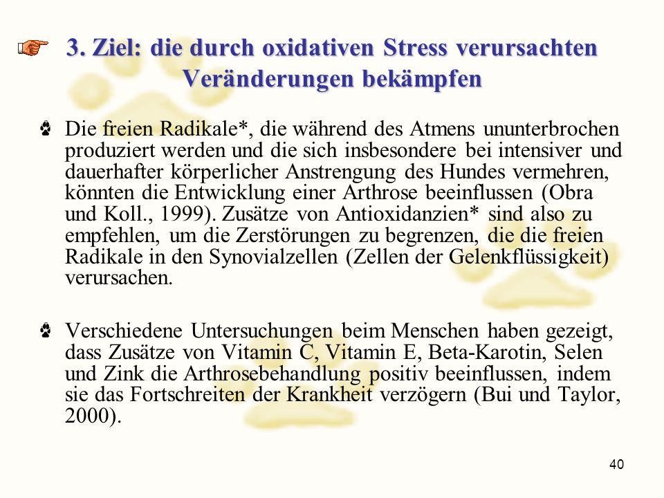 3. Ziel: die durch oxidativen Stress verursachten Veränderungen bekämpfen