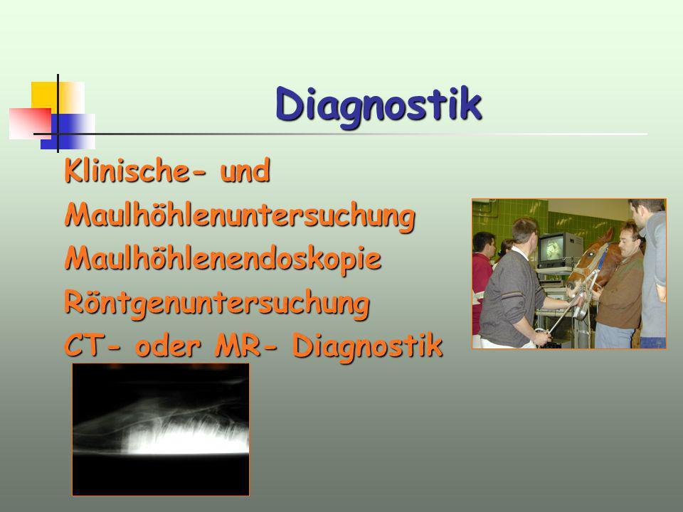 Diagnostik Klinische- und Maulhöhlenuntersuchung Maulhöhlenendoskopie