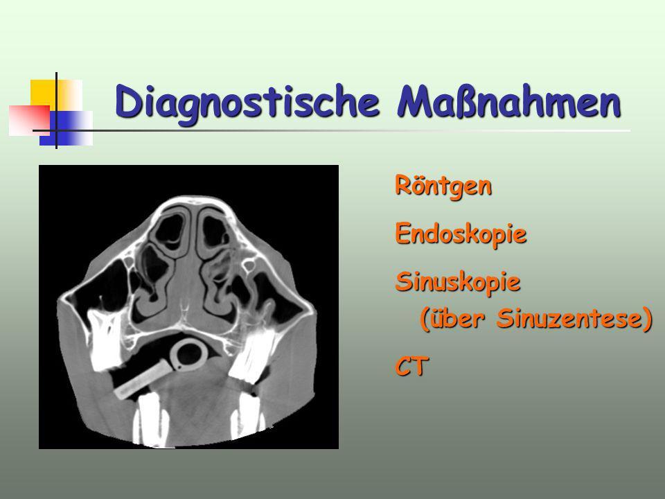 Diagnostische Maßnahmen