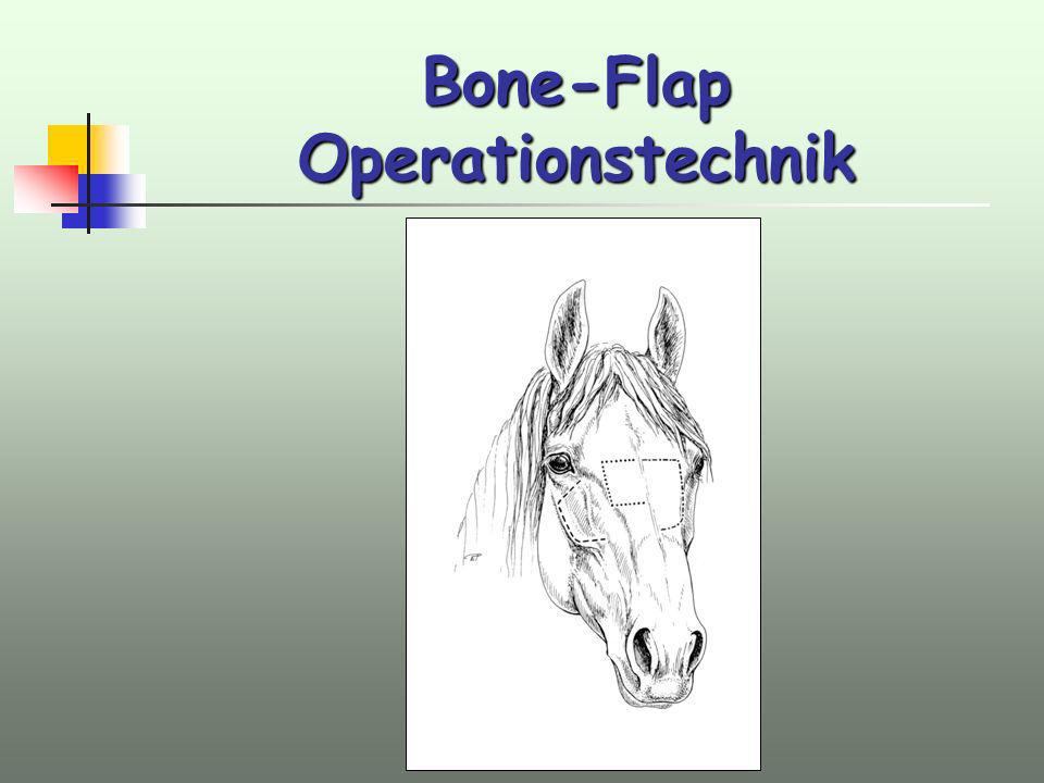 Bone-Flap Operationstechnik