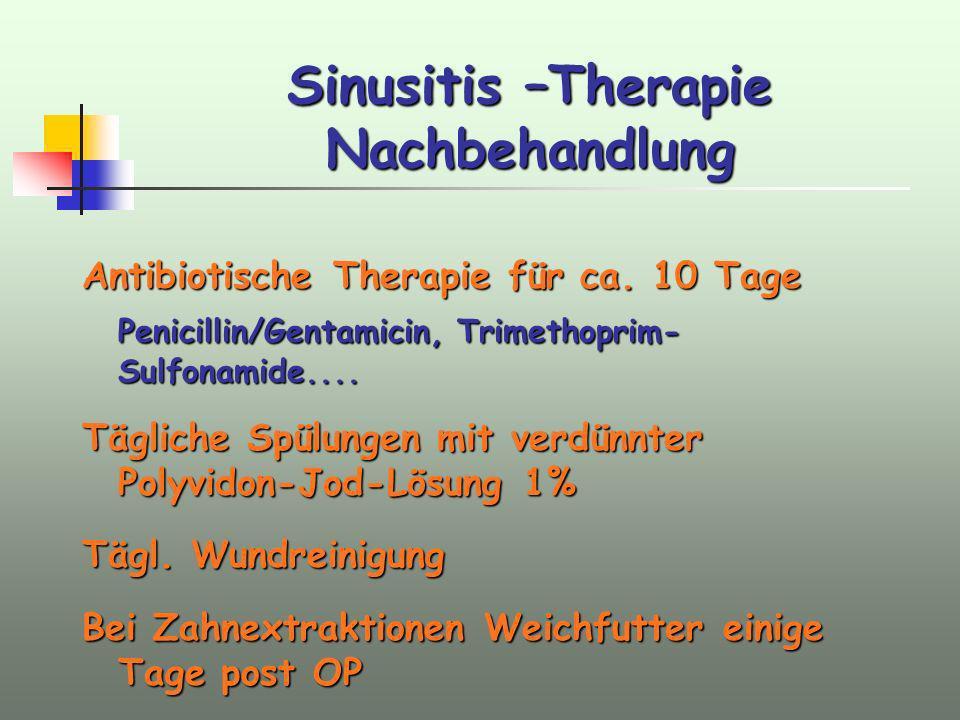 Sinusitis –Therapie Nachbehandlung
