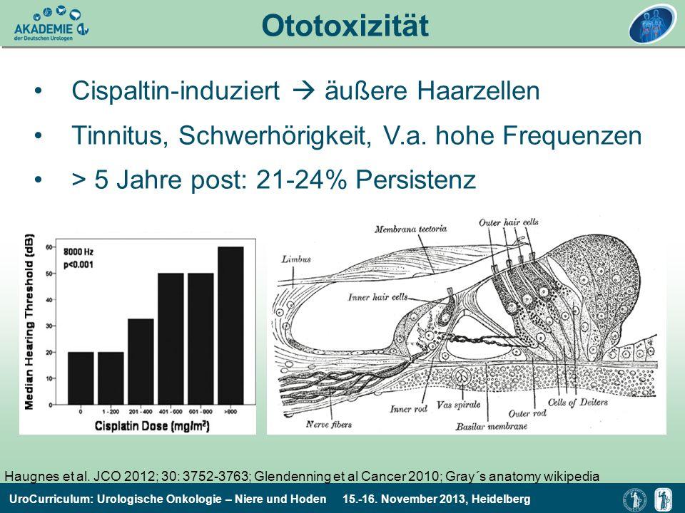Ototoxizität Cispaltin-induziert  äußere Haarzellen