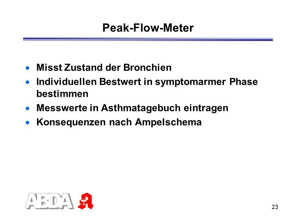 Peak-Flow-Meter Misst Zustand der Bronchien