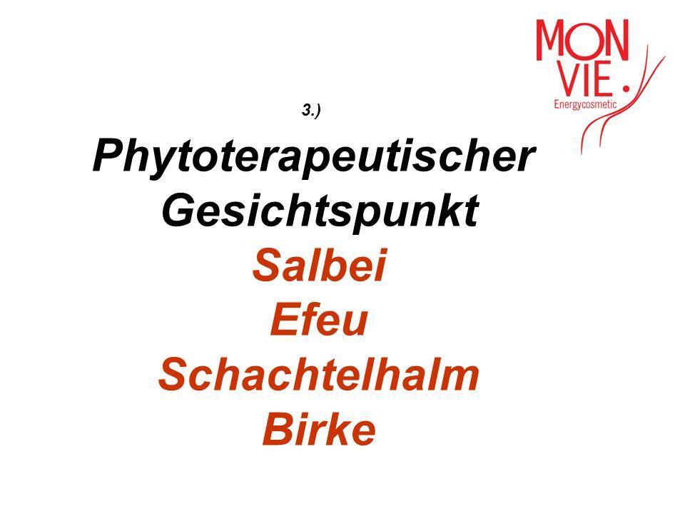 Phytoterapeutischer Gesichtspunkt Salbei Efeu Schachtelhalm Birke
