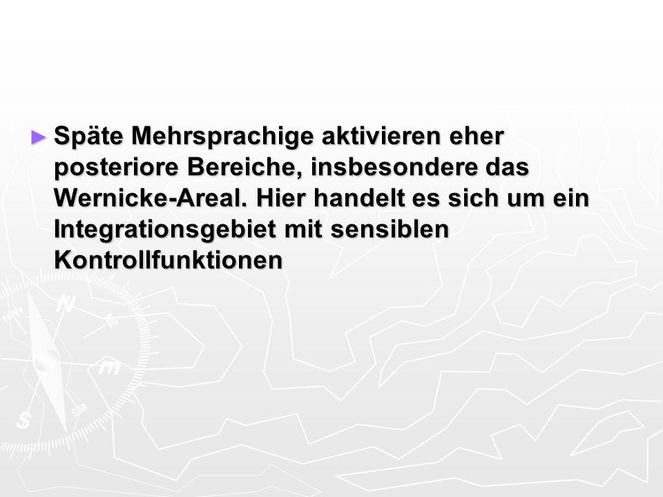 Späte Mehrsprachige aktivieren eher posteriore Bereiche, insbesondere das Wernicke-Areal.