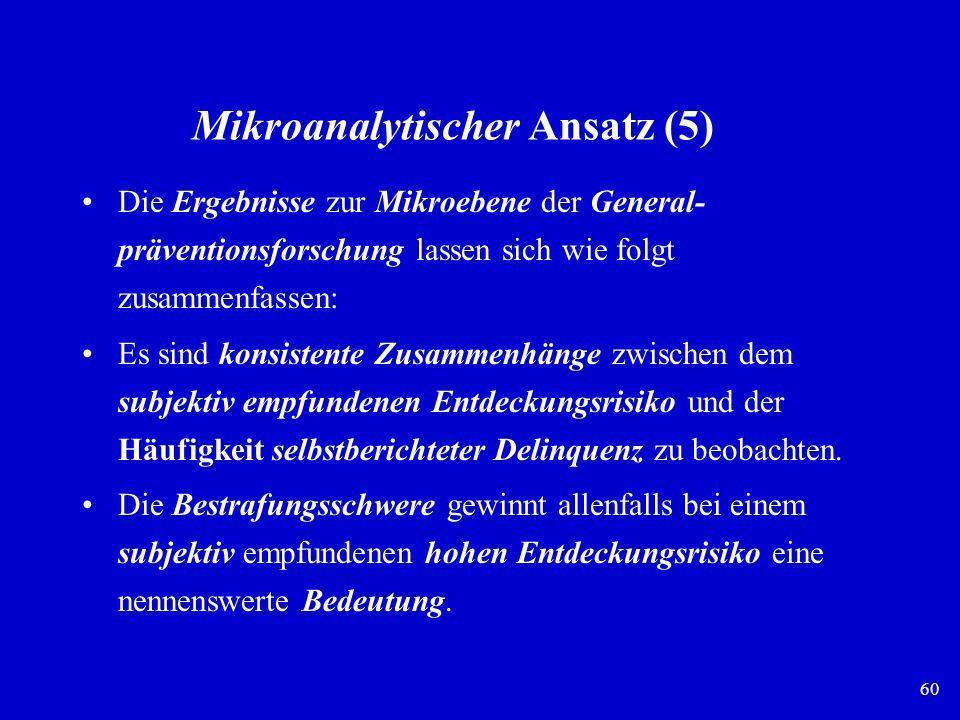 Mikroanalytischer Ansatz (5)