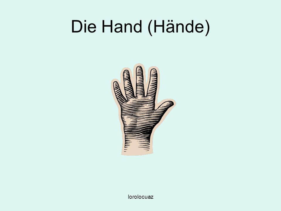 Die Hand (Hände) lorolocuaz