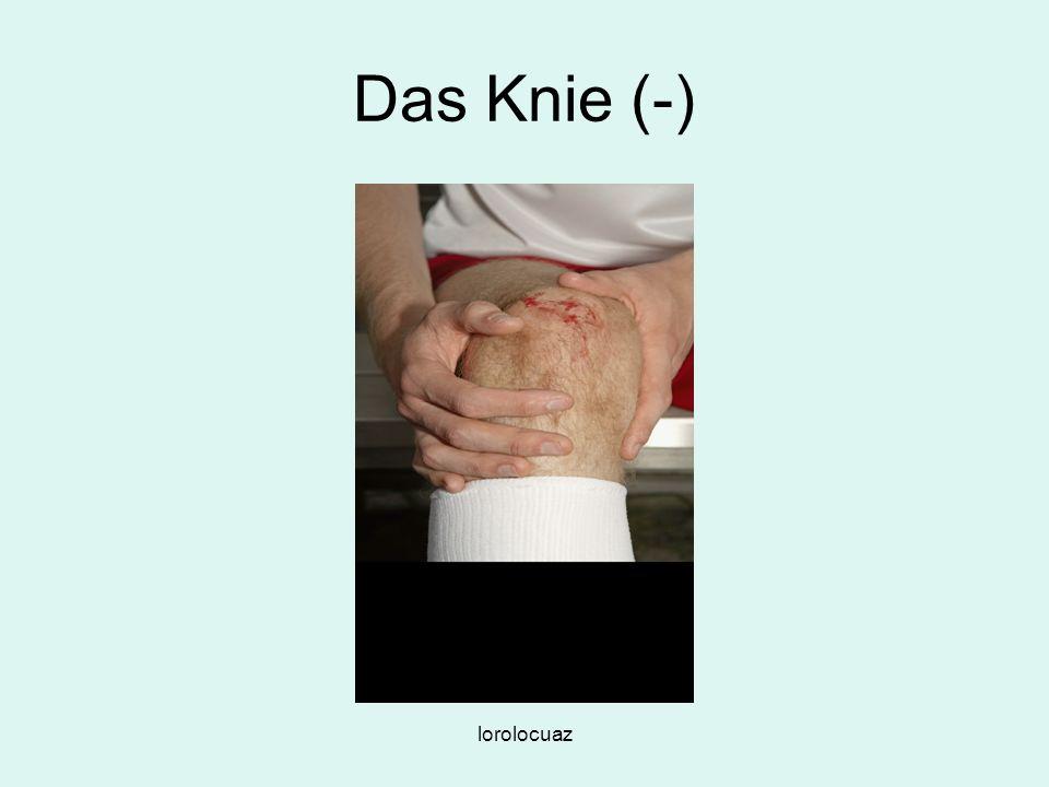 Das Knie (-) lorolocuaz