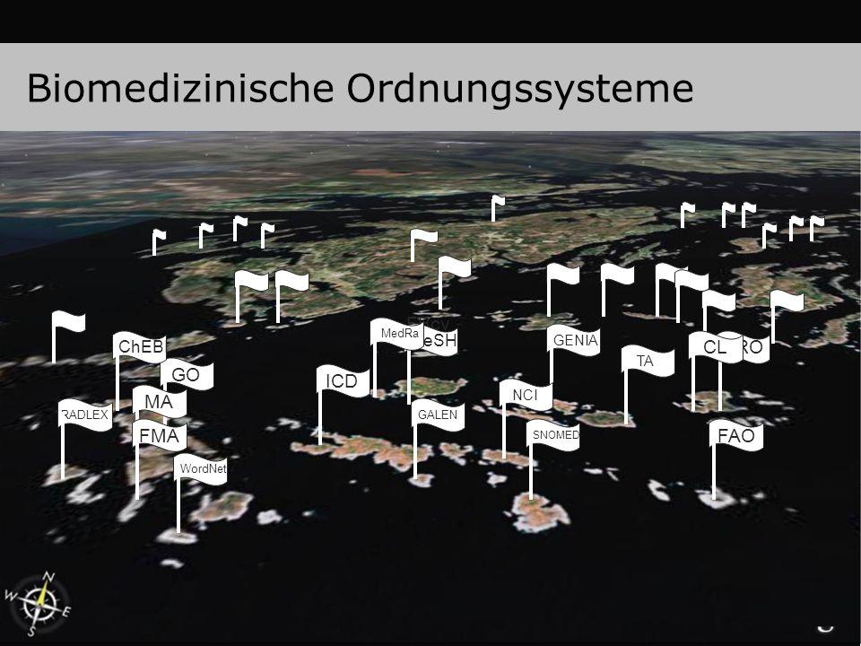 Biomedizinische Ordnungssysteme