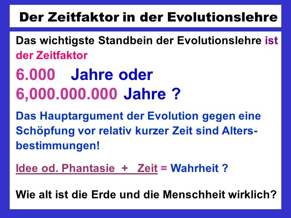 Der Zeitfaktor in der Evolutionslehre