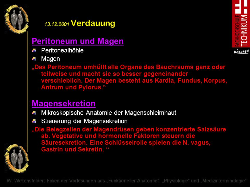 13.12.2001 Verdauung Peritoneum und Magen Magensekretion