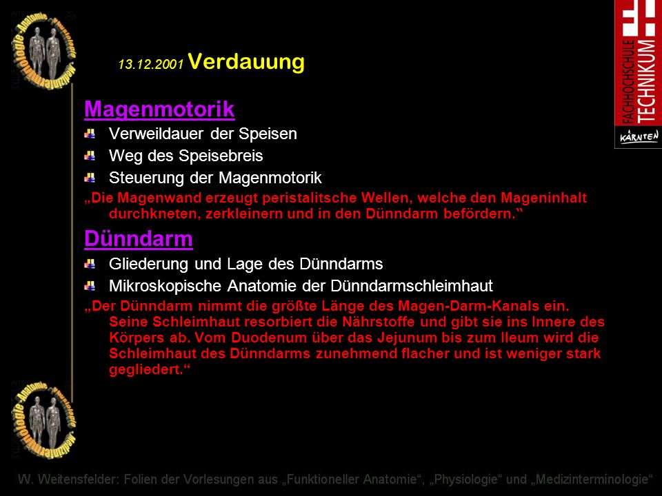 13.12.2001 Verdauung Magenmotorik Dünndarm Verweildauer der Speisen