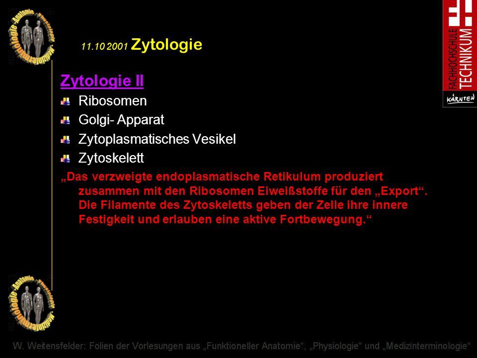 Zytologie II Ribosomen Golgi- Apparat Zytoplasmatisches Vesikel