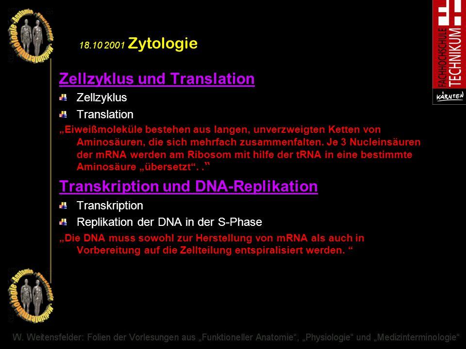 Zellzyklus und Translation