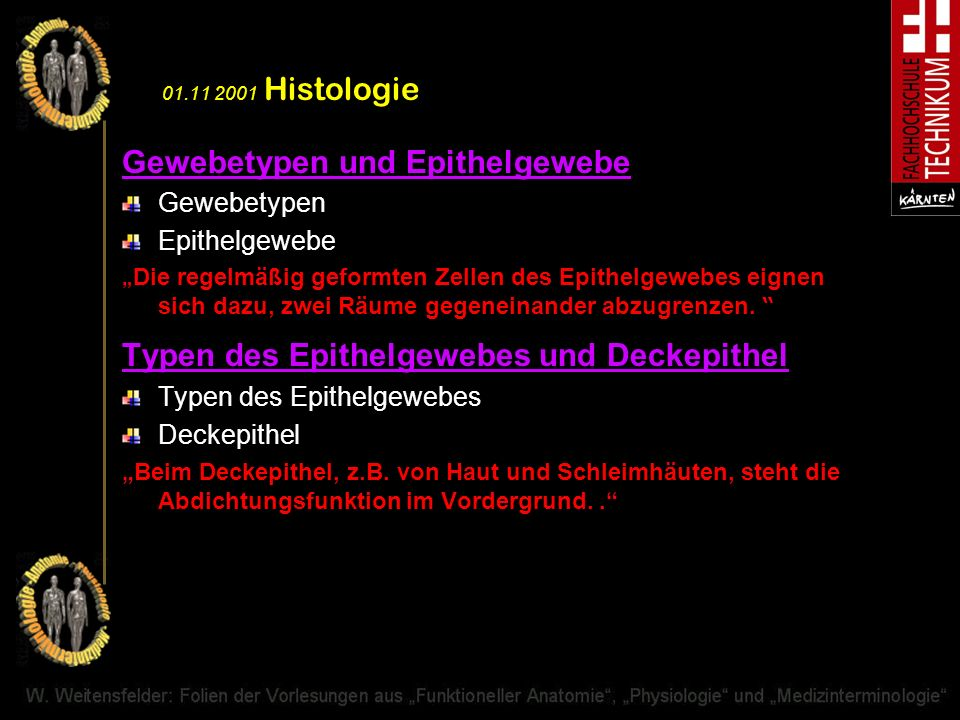 Gewebetypen und Epithelgewebe