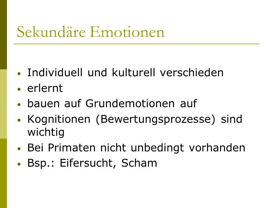 Sekundäre Emotionen Individuell und kulturell verschieden erlernt