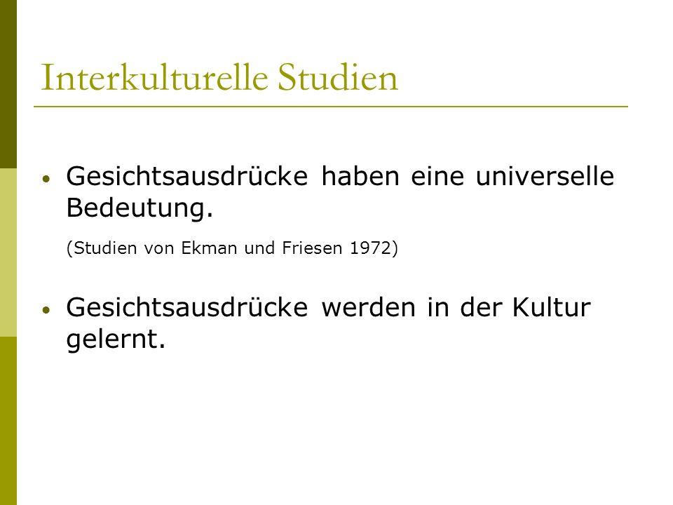 Interkulturelle Studien