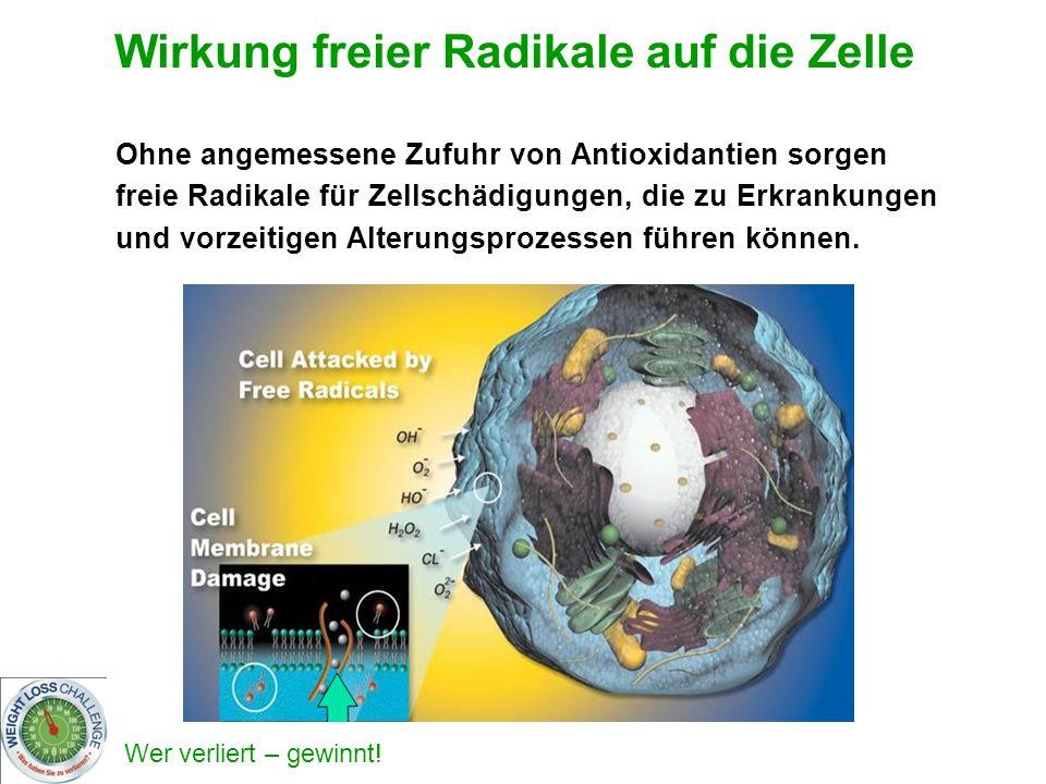Wirkung freier Radikale auf die Zelle