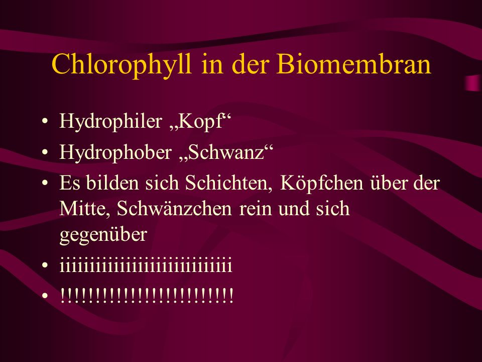 Chlorophyll in der Biomembran