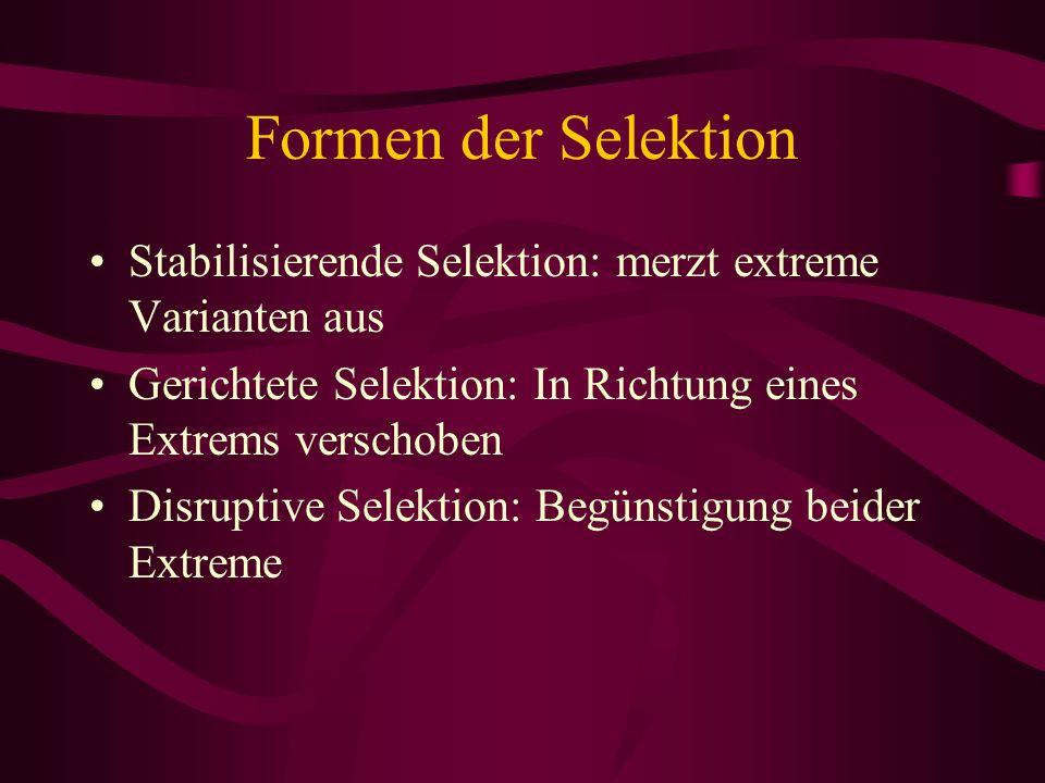 Formen der Selektion Stabilisierende Selektion: merzt extreme Varianten aus. Gerichtete Selektion: In Richtung eines Extrems verschoben.