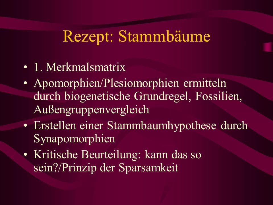 Rezept: Stammbäume 1. Merkmalsmatrix