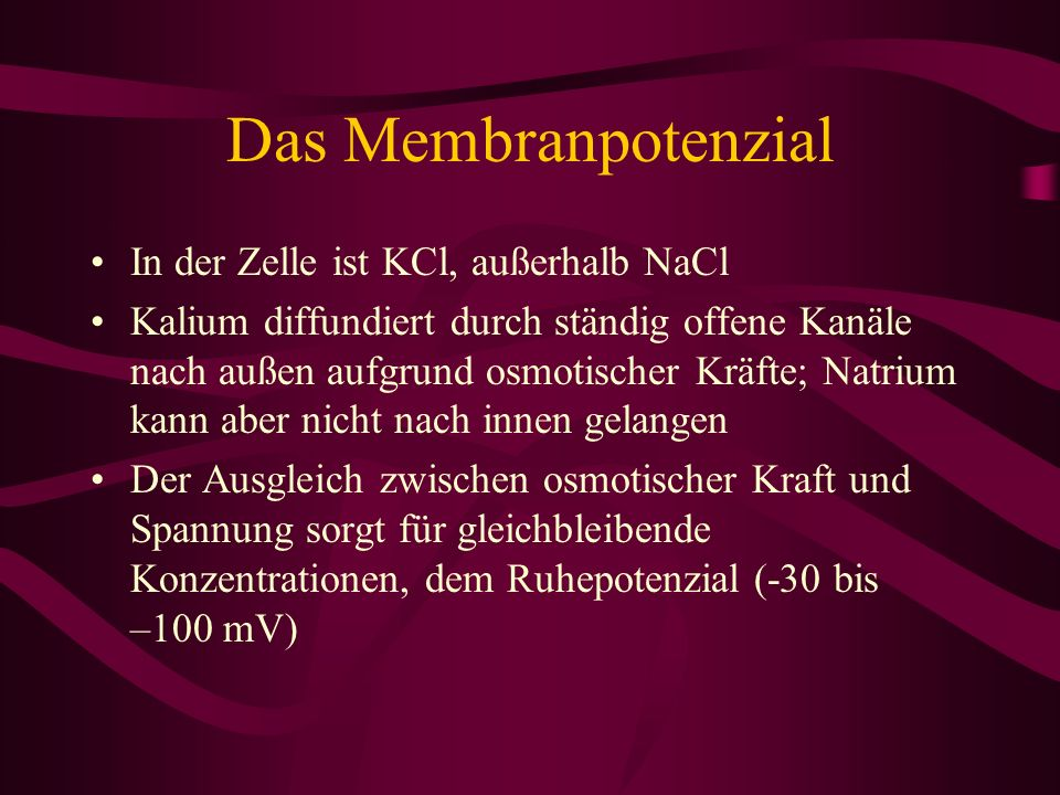 Das Membranpotenzial In der Zelle ist KCl, außerhalb NaCl