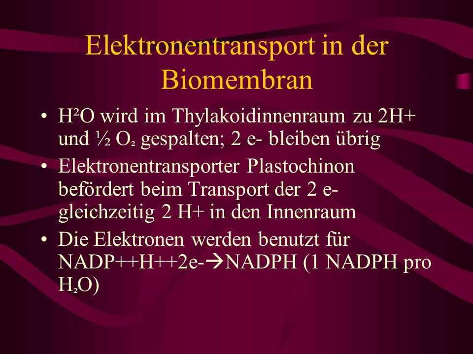 Elektronentransport in der Biomembran