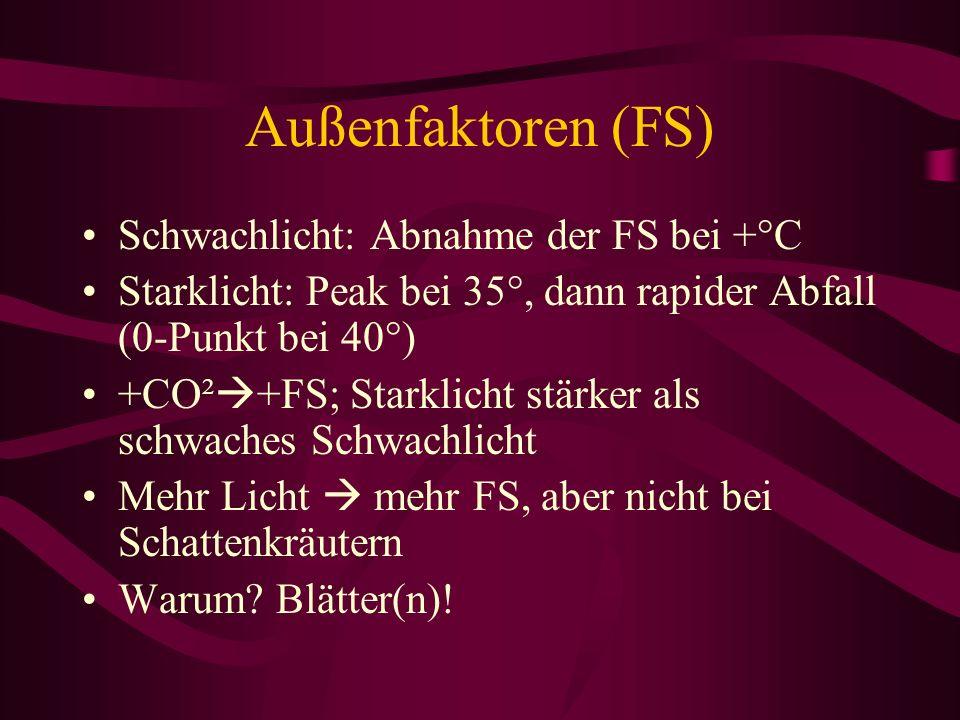 Außenfaktoren (FS) Schwachlicht: Abnahme der FS bei +°C