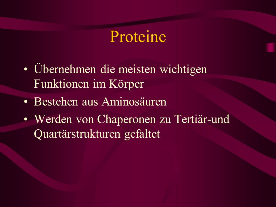 Proteine Übernehmen die meisten wichtigen Funktionen im Körper