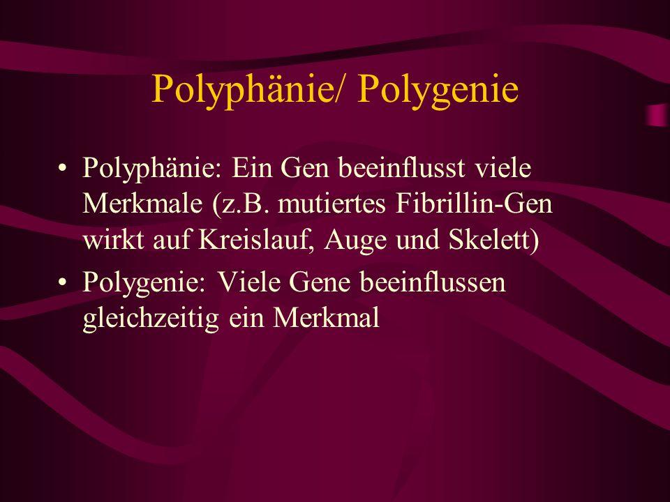 Polyphänie/ Polygenie
