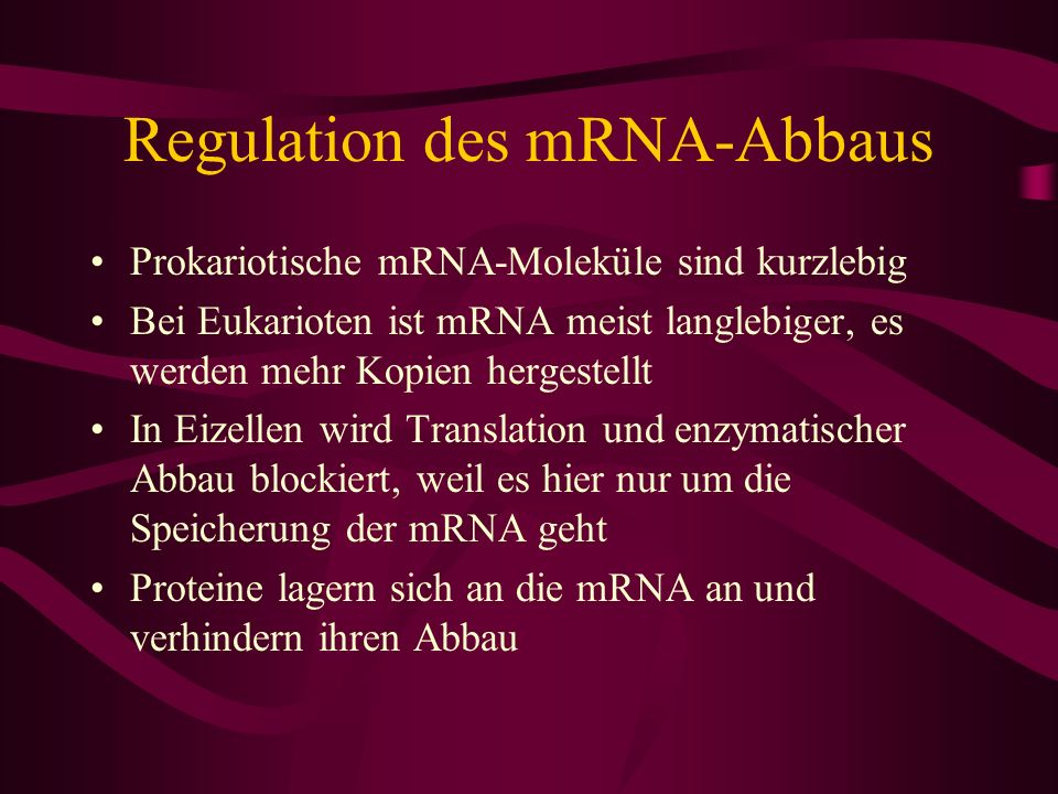 Regulation des mRNA-Abbaus
