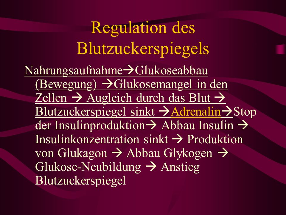 Regulation des Blutzuckerspiegels