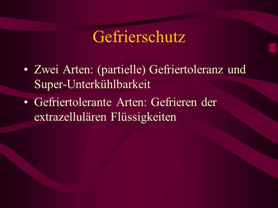 Gefrierschutz Zwei Arten: (partielle) Gefriertoleranz und Super-Unterkühlbarkeit.
