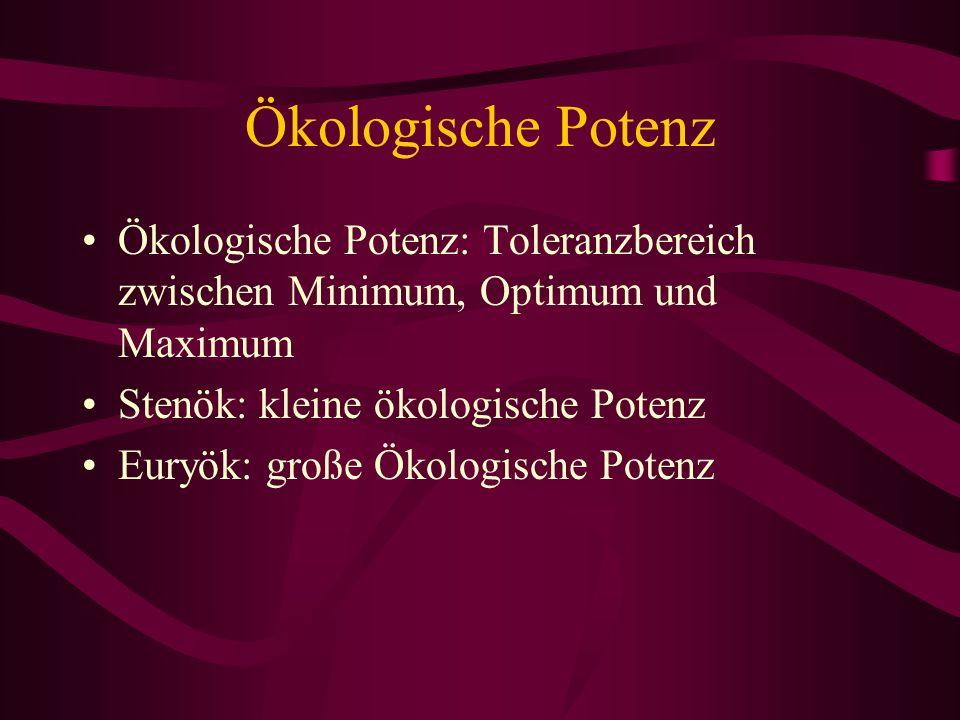 Ökologische Potenz Ökologische Potenz: Toleranzbereich zwischen Minimum, Optimum und Maximum. Stenök: kleine ökologische Potenz.