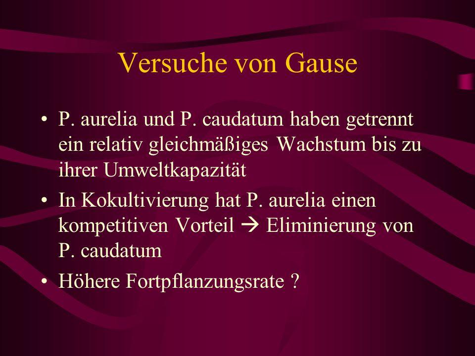 Versuche von Gause P. aurelia und P. caudatum haben getrennt ein relativ gleichmäßiges Wachstum bis zu ihrer Umweltkapazität.