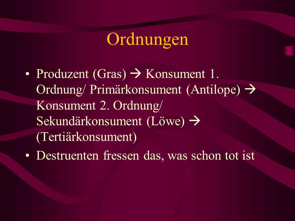 Ordnungen Produzent (Gras)  Konsument 1. Ordnung/ Primärkonsument (Antilope)  Konsument 2. Ordnung/ Sekundärkonsument (Löwe)  (Tertiärkonsument)