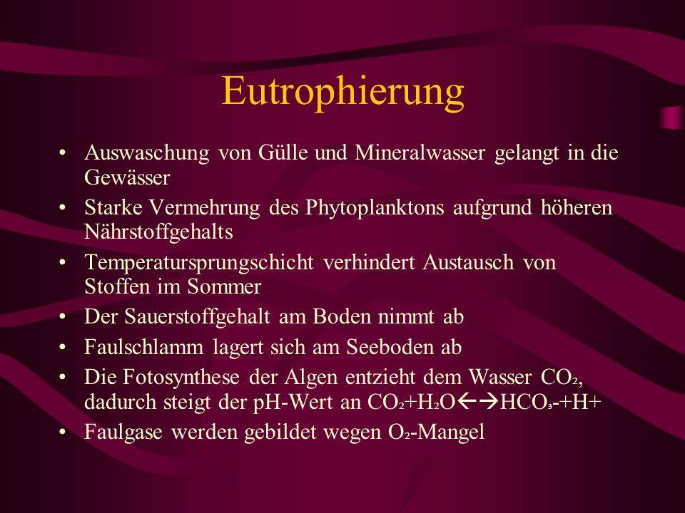 Eutrophierung Auswaschung von Gülle und Mineralwasser gelangt in die Gewässer.