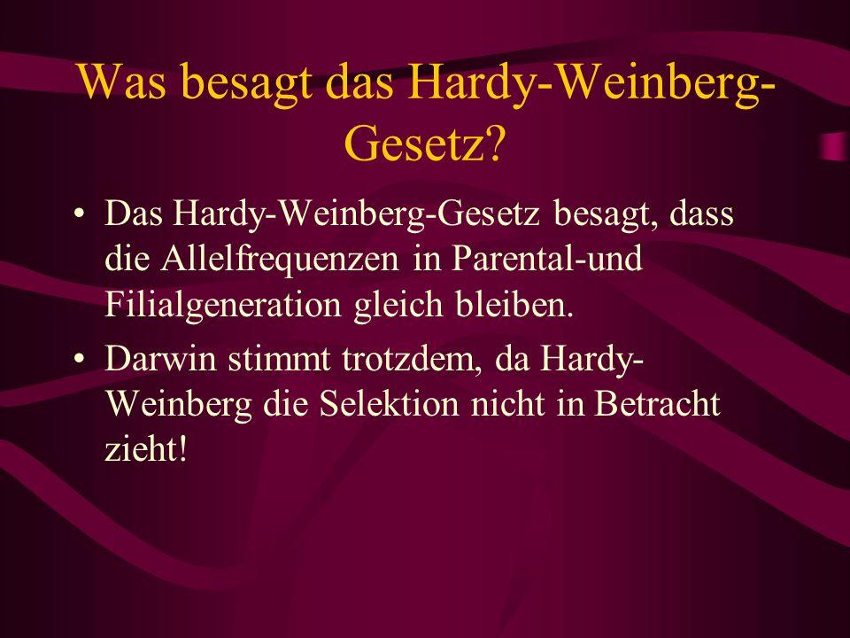 Was besagt das Hardy-Weinberg-Gesetz