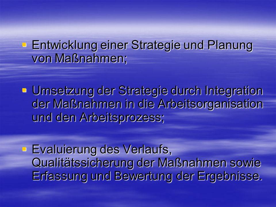 Entwicklung einer Strategie und Planung von Maßnahmen;