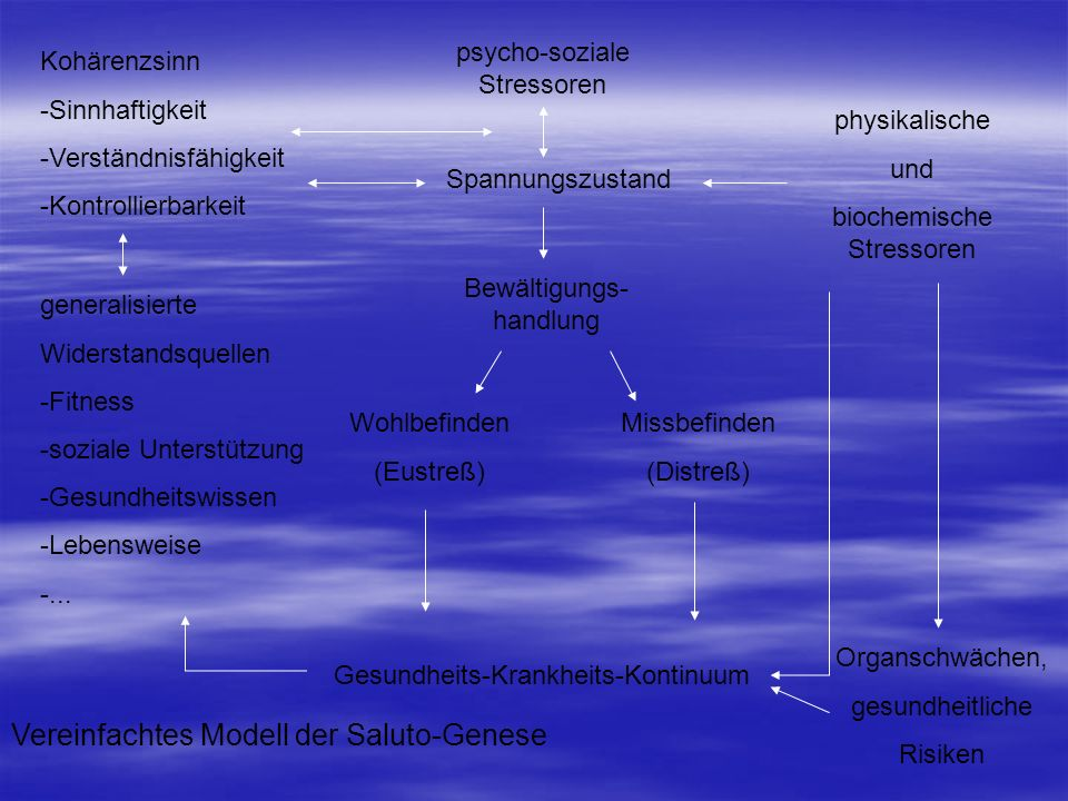 Vereinfachtes Modell der Saluto-Genese